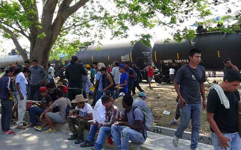 grupo-de-200-migrantes-doma-a-la-bestia-y-detiene-su-marcha