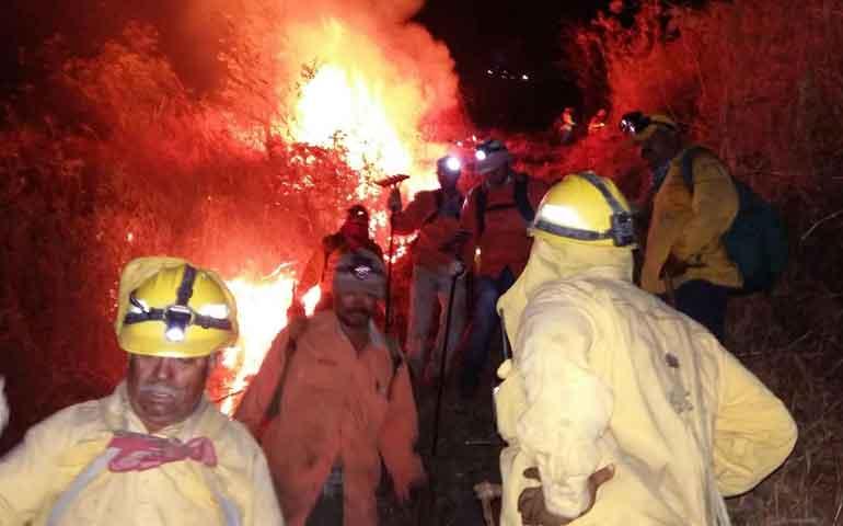 incendio-en-cerro-de-san-juan-afecto-85-hectareas