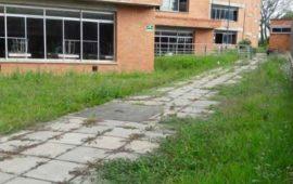 hallan-muerto-a-nino-de-4-anos-en-colegio-de-colombia