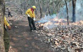 controlado-un-90-incendio-en-cerro-de-san-juan
