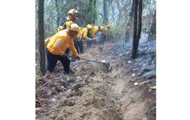 disminuyen-los-incendios-forestales-en-nayarit
