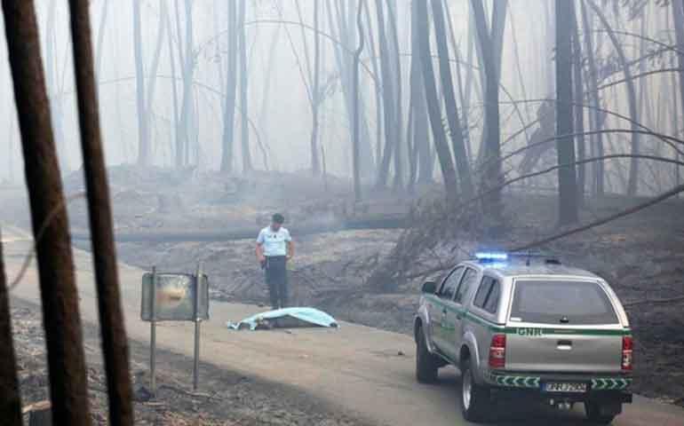 incendio-forestal-en-portugal-deja-63-muertos