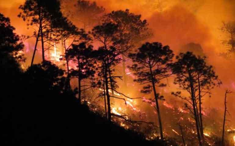 uan-ofrece-programa-de-monitoreo-para-incendios-forestales