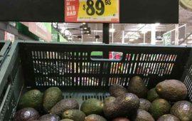 el-aguacate-se-vende-hasta-en-90-pesos-el-kilo