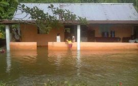 lluvias-dejan-60-casas-inundadas-por-crecida-de-rios-en-oaxaca