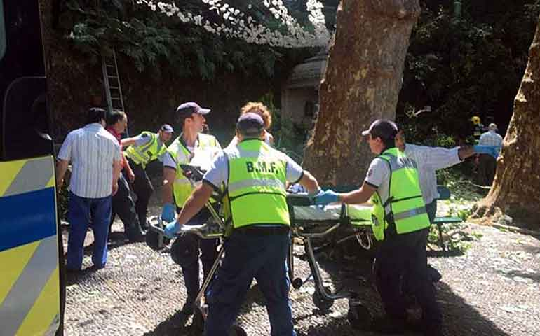 arbol-aplasta-a-multitud-en-portugal-reportan-11-muertos