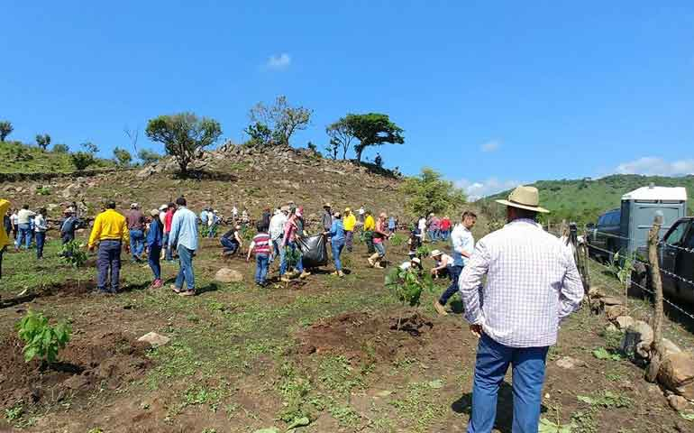 celebra-conafor-reforestacion-social-un-nuevo-bosque-en-ahuacatlan