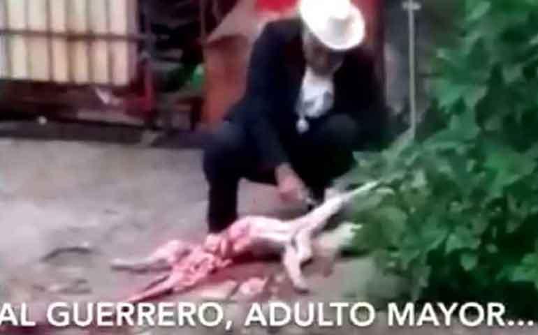 denuncian-a-hombre-que-desolla-perros-en-valle-de-mexico
