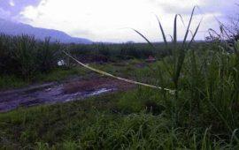 encuentran-siete-cuerpos-en-fosa-clandestina-rumbo-a-pantanal