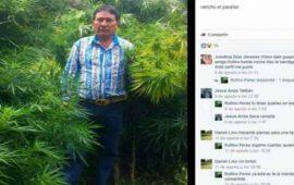 igual-que-el-chapo-regidor-se-toma-foto-en-plantio-de-cannabis