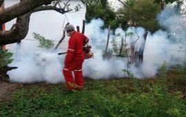 intensifican-operativo-contra-mosco-transmisor-de-enfermedades