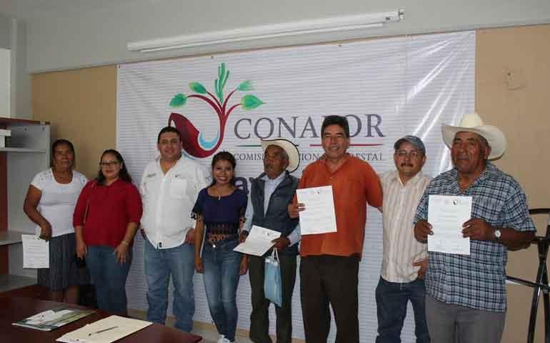 asigna-conafor-180-mil-pesos-para-promotores-forestales-comunitarios