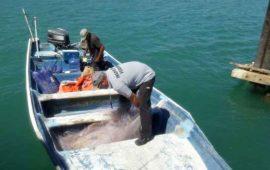 procuraduria-ambiental-sorprende-a-pescador-ilegal-en-bahia-de-banderas