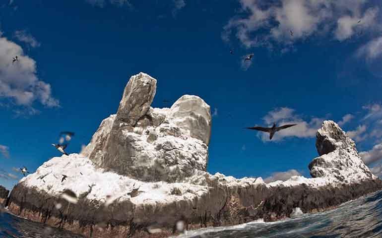 busca-mexico-declarar-parque-nacional-a-revillagigedo