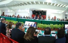 dirigencia-estatal-del-pri-asiste-a-reunion-del-comite-ejecutivo-nacional
