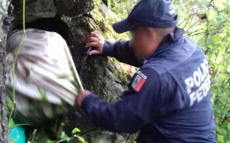 hallan-100-kilos-de-droga-oculta-en-una-cueva-de-guerrero