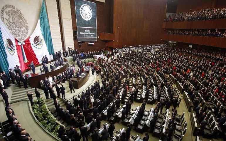 lanzan-peticion-para-exigir-que-la-licenciatura-sea-obligatoria-para-ser-diputado-o-senador