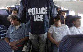 mayoria-de-mexicanos-encara-deportacion-sin-abogados