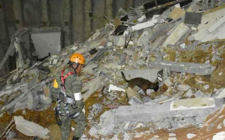 binomios-caninos-ubican-a-desaparecida-en-derrumbe-en-monterrey