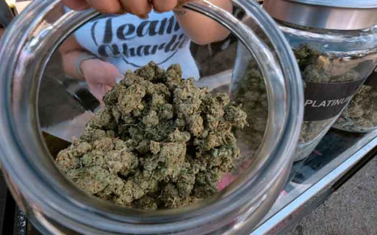 venderan-mariguana-recreativa-el-proximo-ano-en-los-angeles