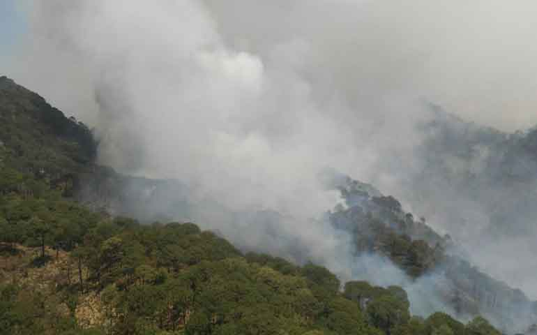 conforma-la-conafor-estrategia-contra-incendios-forestales
