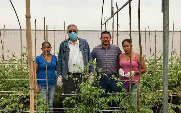 inaes-otorgo-mas-de-24-millones-de-pesos-en-apoyo-a-productores-sociales-en-nayarit