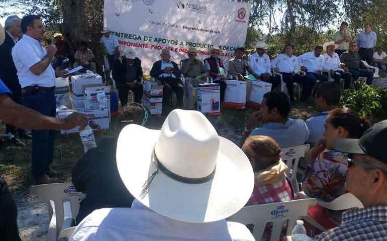 sagarpa-entrega-plantas-e-insumos-a-mas-de-380-productores-de-cafe-en-nayarit