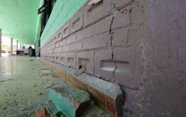 subastaran-cola-de-dinosaurio-para-reconstruir-escuelas