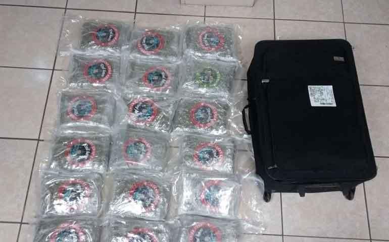 aseguran-mas-de-10-kilos-de-marihuana-en-paqueteria-de-la-capital-nayarita