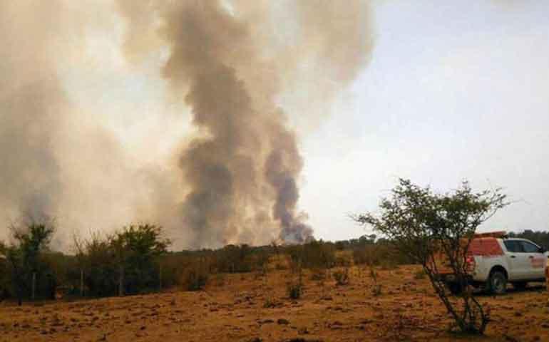 prenden-fuego-para-un-asado-y-queman-mil-hectareas-en-argentina