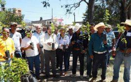 castellon-apoya-a-productores-tepicenses