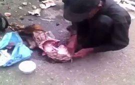destaza-a-perro-para-alimentarse-en-venezuela