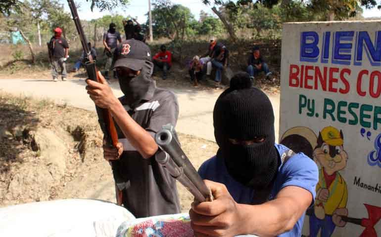 aguacate-mexicano-el-oro-verde-para-el-crimen-organizado