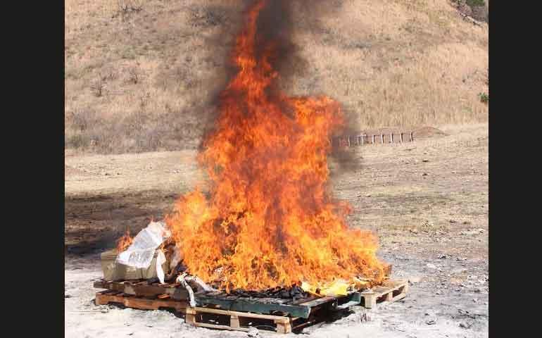 incineran-mas-de-55-kilos-de-droga-en-nayarit