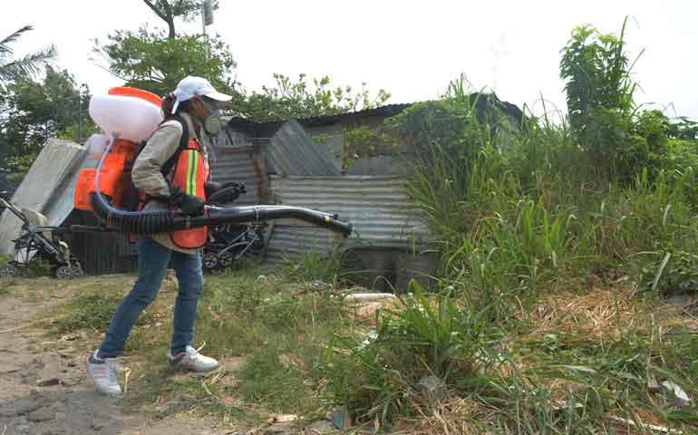 refuerzan-medidas-contra-el-dengue-chikungunya-y-zika