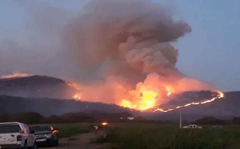 suspenden-clases-en-4-municipios-de-jalisco-por-incendio-forestal