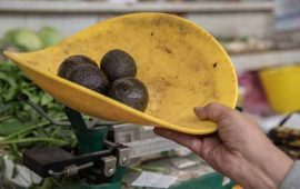 bajan-precios-de-aguacate-y-huevo-en-algunos-mercados