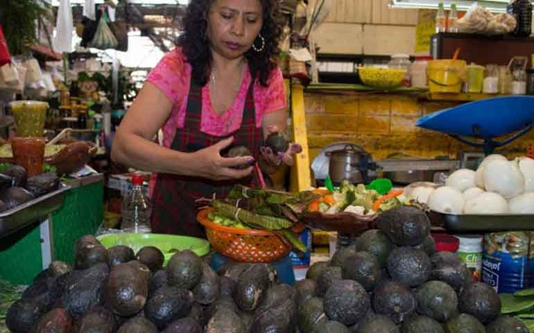suben-precios-de-aguacate-limon-y-huevo-en-los-mercados