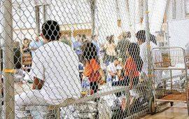 indignan-jaulas-de-ninos-migrantes
