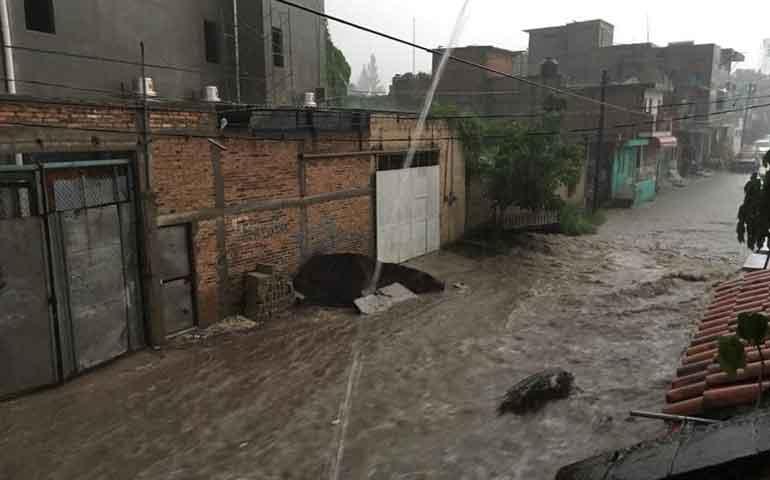 fuerte-lluvia-azoto-tepic-tumba-arboles-y-letreros-en-la-ciudad