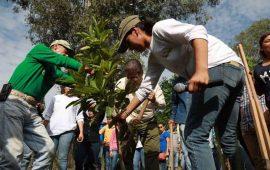 javier-castellon-encabezo-mega-jornada-de-reforestacion
