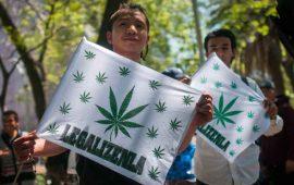 regular-mariguana-paso-para-pacificar-al-pais-morena