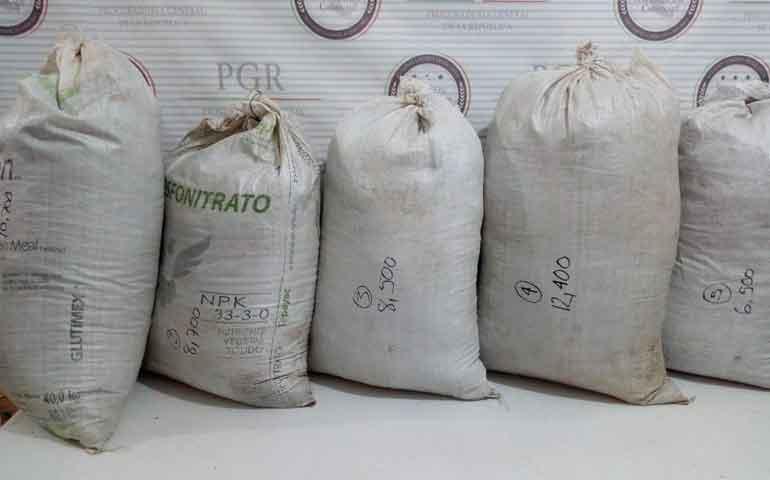 aseguran-mas-de-46-kilos-de-marihuana-en-ixtlan-del-rio