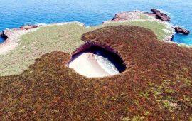 playa-escondida-en-la-lista-de-las-50-mejores-playas-del-mundo